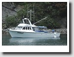 Bay Fishing Charters
