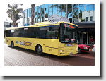 Local Tauranga Bus Services