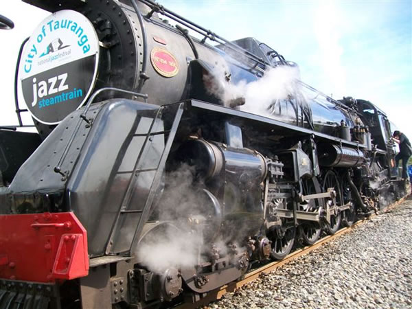 The magnificent steam locomotive (5)