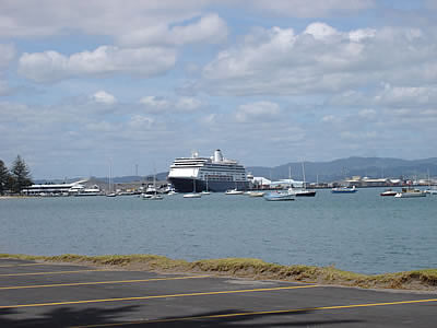 business report on port of tauranga Schedule of charges / conditions of business  other highlights in the 2017 berl report: port taranaki is  behind only port of tauranga port taranaki's.